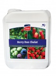 BERRY DUO CHELAT 5L
