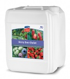 BERRY DUO CHELAT 20L